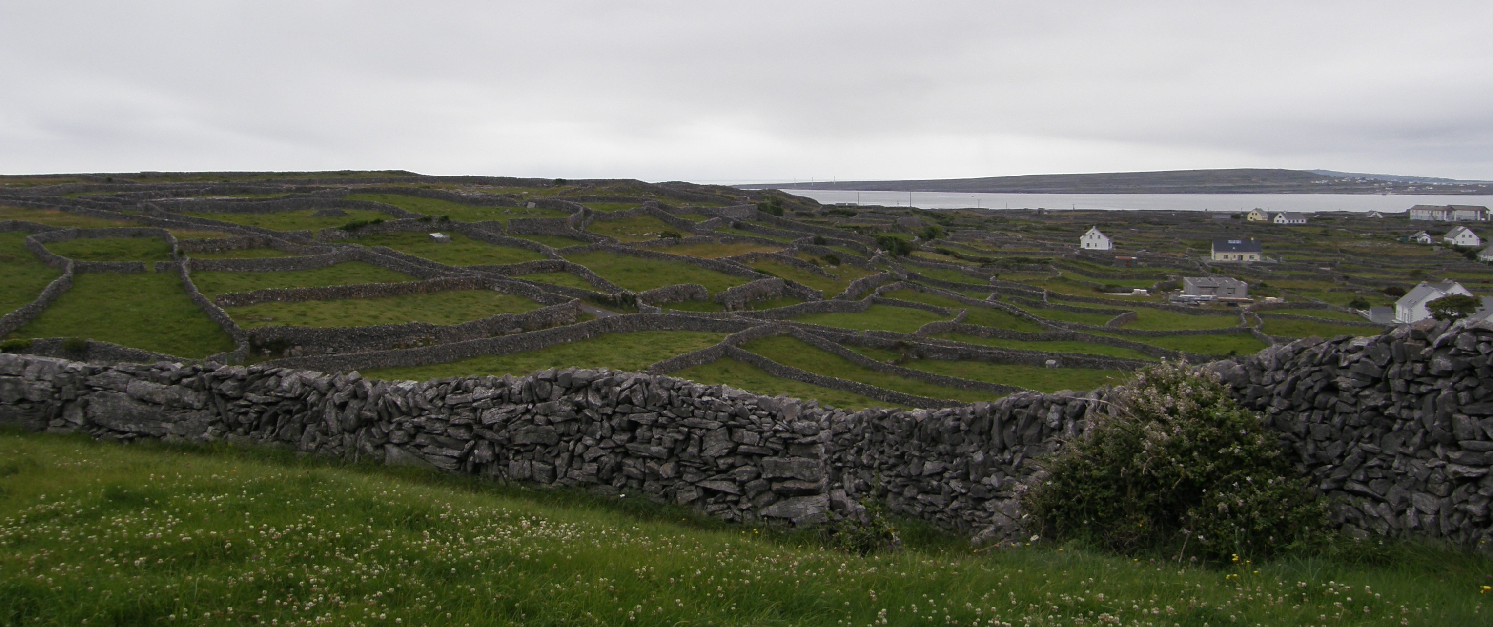 Rock-walled Fields (Inis Oírr)