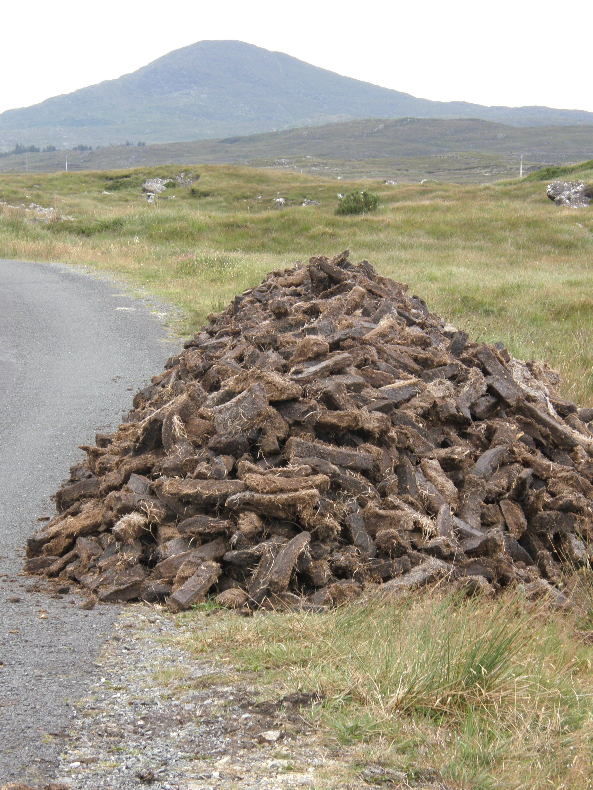 """A """"Rickle"""" or Pile of Turf Ready to be Transported Home"""