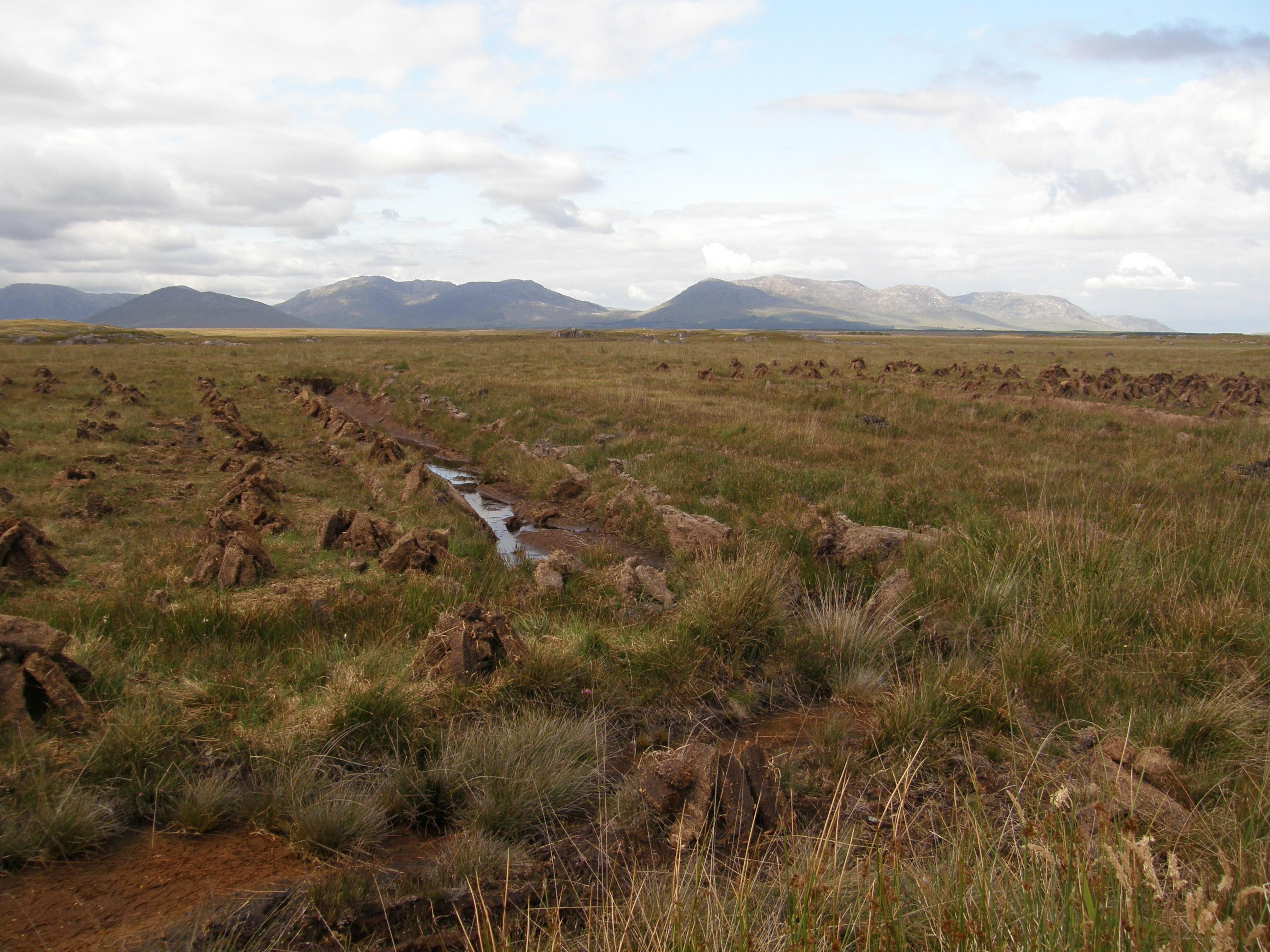 A Field of Footings
