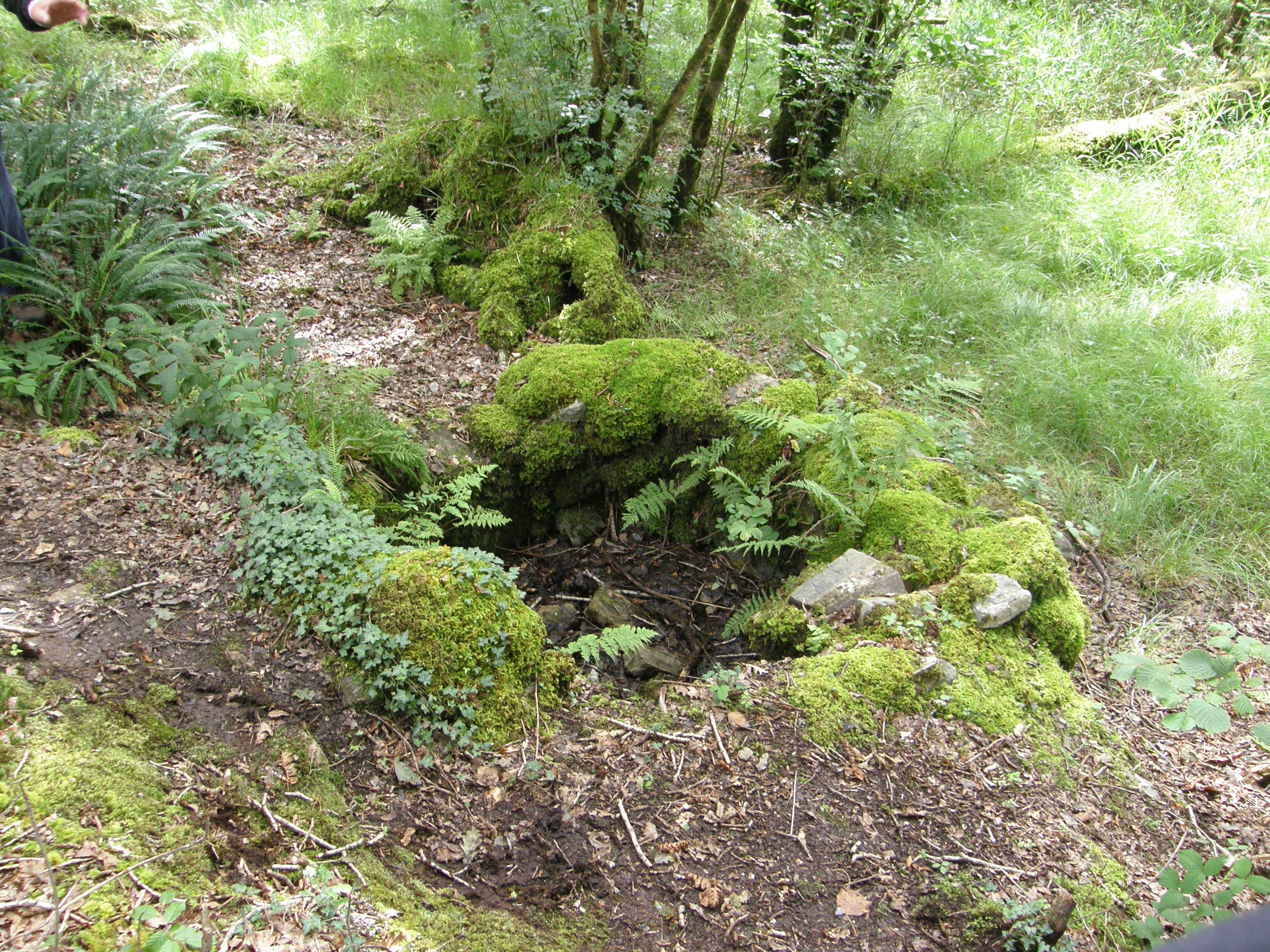 Tobar Feithín on the grounds of Ballynahinch Castle