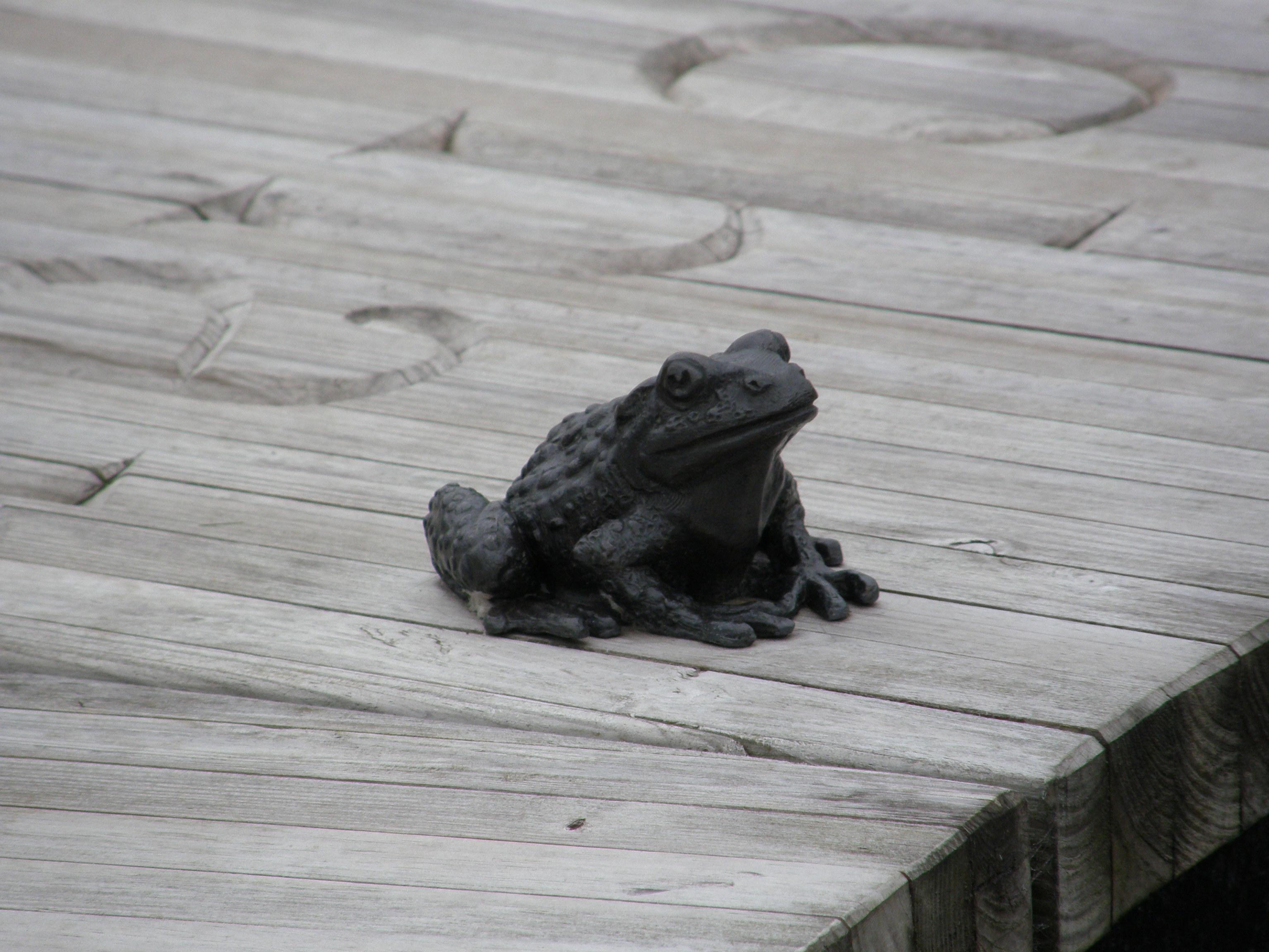 Frog Sculpture, Rooftop Garden, New Lanark, Scotland