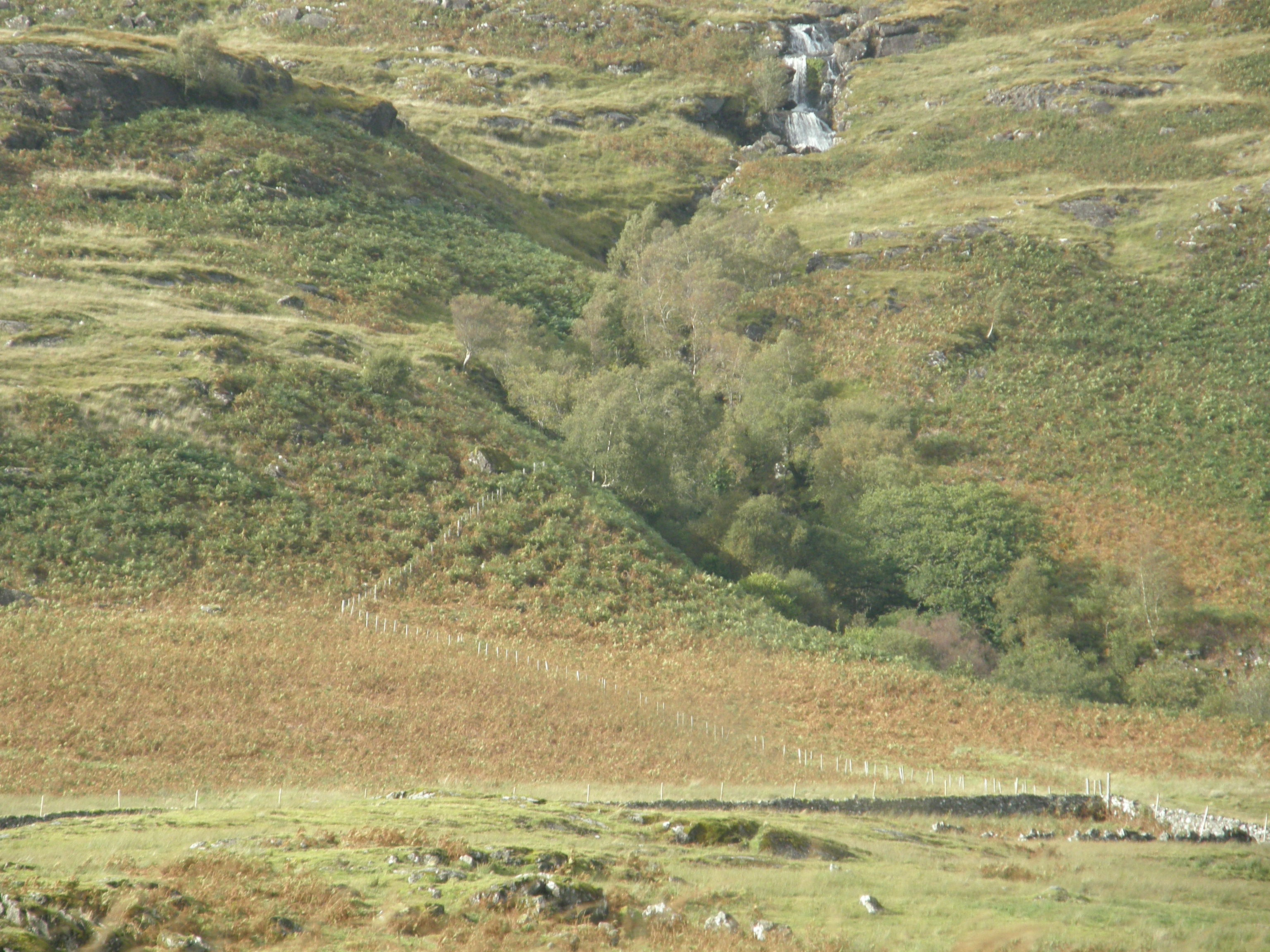 A Waterfall on Mull