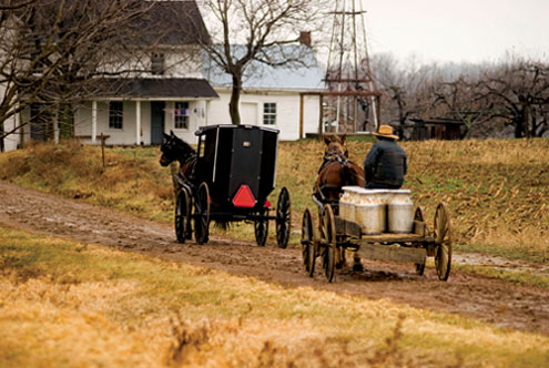 Amish Buggy and Cart in Ohio