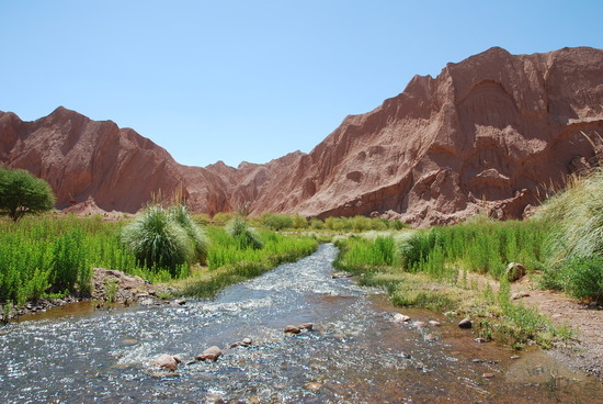 A River in the Desert