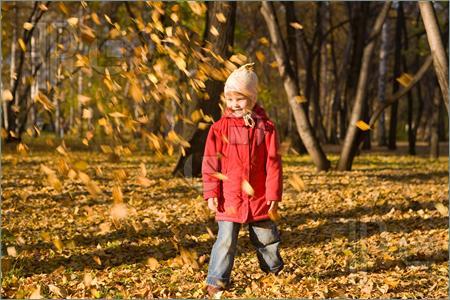 Autumn Leaves Thrown in the Air